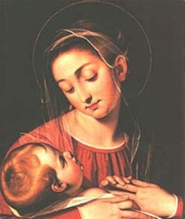 La Madonna della Divina Provvidenza - San Carlo ai Catinari